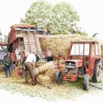 Michael-Cooper-Threshing-Time